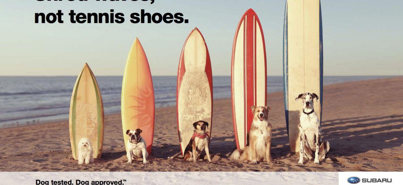 Shawn_Michienzi_Subaru_DogTested_Surfing_Poster